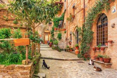 Väggdekor Vacker gränd i gamla stan Toscana