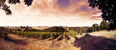 Väggdekor vacker solnedgång över vingårdarna i Toscana