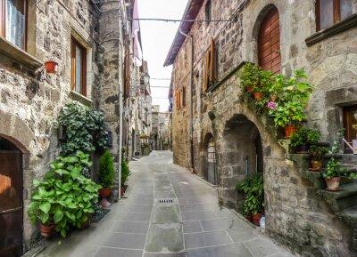 Väggdekor Vacker utsikt över gamla traditionella hus och idylliska gränd i den historiska staden Vitorchiano, Viterbo, Lazio, Italien