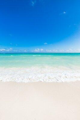 Väggdekor vackra tropiska hav