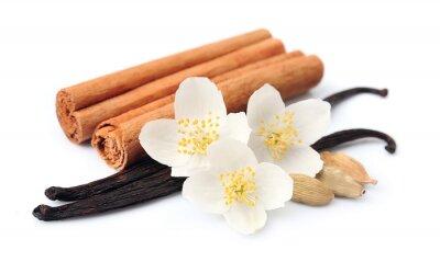 Väggdekor vanilj pinnar
