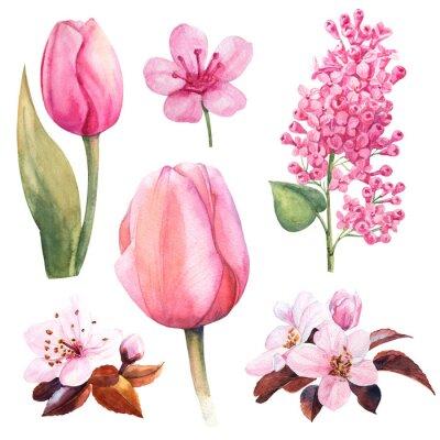 Väggdekor vår akvarell blomma set med tulpan och lila