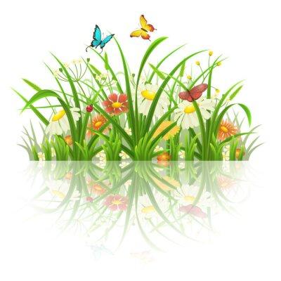 Väggdekor Våren gräs, blommor och fjärilar med reflektion på vit