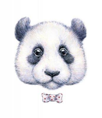 Väggdekor Vatten färg teckning av en panda på vit bakgrund