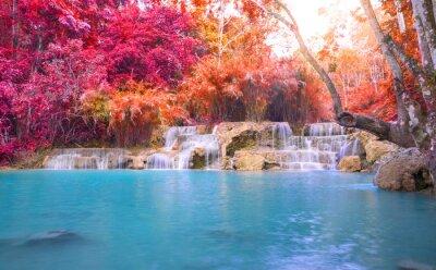 Väggdekor Vattenfall i regnskogen (Tat Kuang Si vattenfall på Luang praba