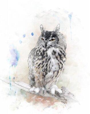 Väggdekor Vattenfärg avbildar av Owl