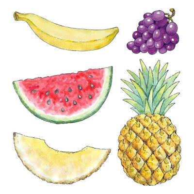 Väggdekor Vattenfärg bild av olika frukter