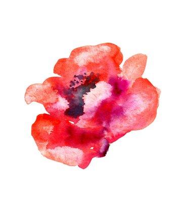 Väggdekor Vattenfärg blomma vallmo