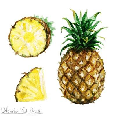 Väggdekor Vattenfärg Food Clipart - Ananas