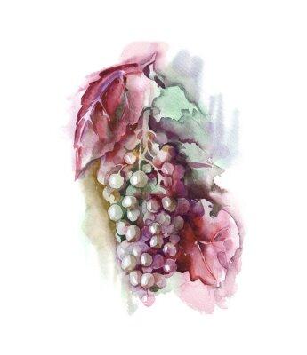 Väggdekor vattenfärg Grape
