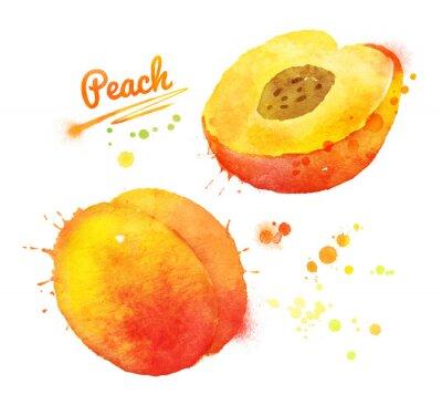Väggdekor Vattenfärg persika.