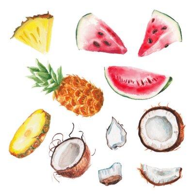 Väggdekor vattenfärg sommaren frukter inställd