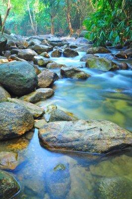 Väggdekor Vattenflödet genom Rocks i en grund Stream i Malaysia djungel