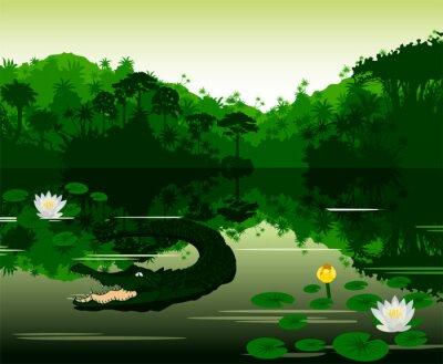 Väggdekor Vector Illustration tropisk flod med krokodil