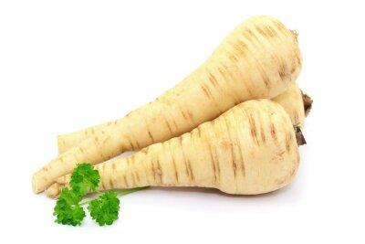 Väggdekor vegetabiliska palsternacka