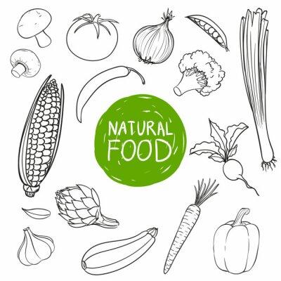 Väggdekor Vektor Illustration av handritad grönsaker