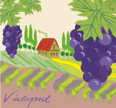 Väggdekor Vektor illustration av vingård