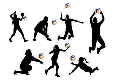 Väggdekor vektor illustration grafisk bakgrund volleybollspelare sport
