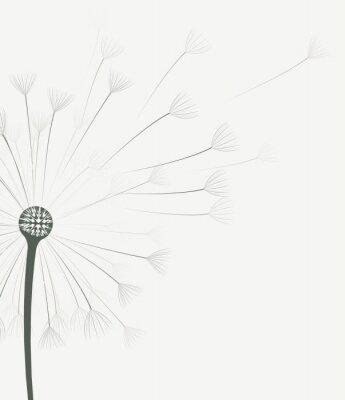 Väggdekor Vektor maskros blomma