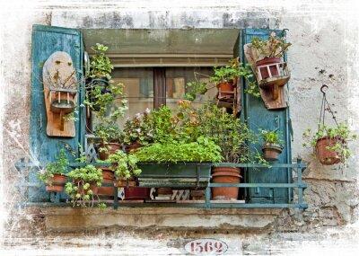 Väggdekor Venedig, gamla små fönster med växter