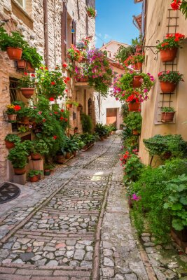 Väggdekor Veranda i liten stad i Italien i solig dag, Umbrien