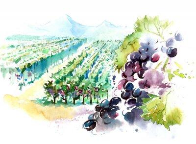 Väggdekor vingårdar