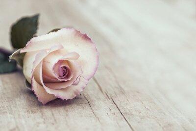 Väggdekor Vintage Rose