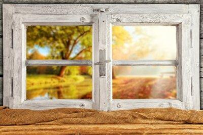 Väggdekor Vintage trä fönster vetter höstträd