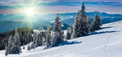 Väggdekor Vinter panorama landskap i bergen. Snötäckta träd och bergstoppar i fjärran.