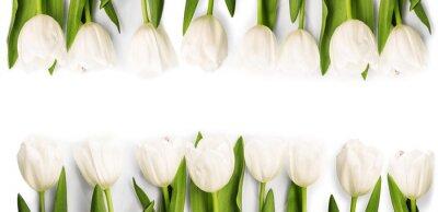 Väggdekor Vita tulpaner med skugga