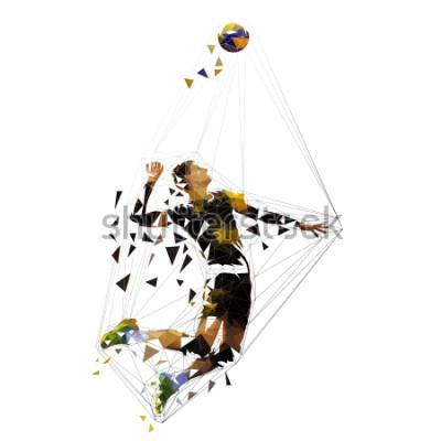 Väggdekor Volleyball player serving ball, polygonal vector illustration