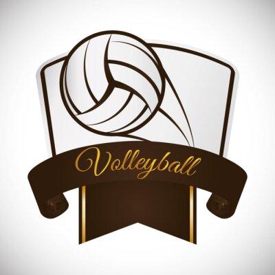 Väggdekor Volleyboll ikonen design