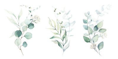 Väggdekor Watercolor floral illustration set - green leaf branches collection, for wedding stationary, greetings, wallpapers, fashion, background. Eucalyptus, olive, green leaves, etc.