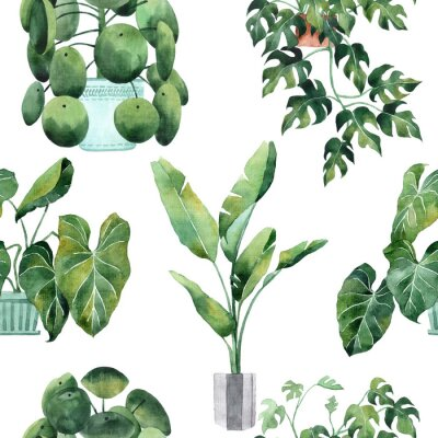 Väggdekor Watercolor seamless pattern with tropical leaves and houseplants leaves. Greenery. Succulent. Floral Design element. Perfect for invitations, cards, prints, posters