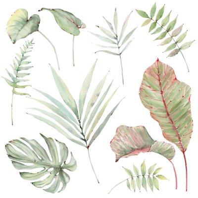 Väggdekor watercolor tropical plants set.