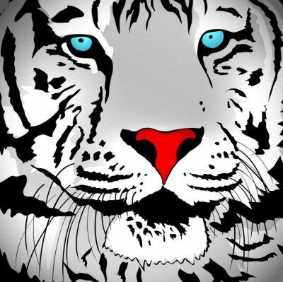 Väggdekor White Tiger porträtt
