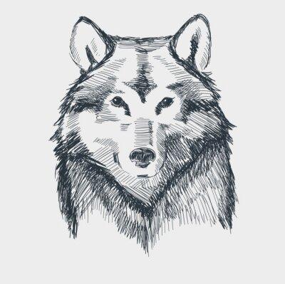 Väggdekor Wolf huvud grunge handritad skiss vektor