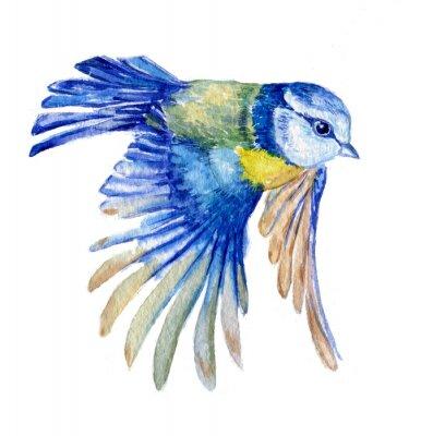 Väggdekor птица синица