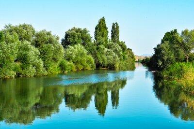Väggdekor Nehir suları ve ağaçların yansıması