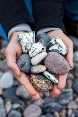 Väggdekor Steine sammeln