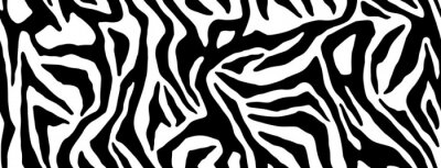 Väggdekor Zebra fur repeating texture. Animal skin stripes, jungle wallpapers. Black and white seamless pattern. Vector