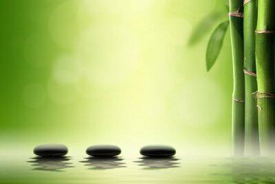 Väggdekor Zen koncept. Svart spa stenar i bambuskog.